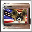 PAPILLION AND AM FLAG ITALIAN CHARM