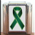 LIVER CANCER #2 AWARENESS ITALIAN CHARM CHARMS