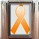LEUKEMIA AWARENESS ITALIAN CHARM CHARMS
