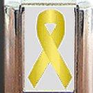 LIVER CANCER ITALIAN CHARM CHARMS