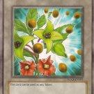 Sinister Seeds Token