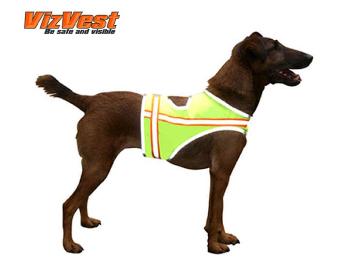 Dog Safety Vest Size L (61-100 lbs.)