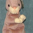 TY Beanie Baby Springy 2000 Retired Free Shipping