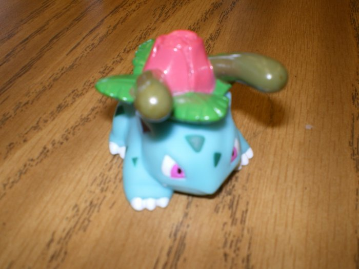 Ivysaur Attack Kid