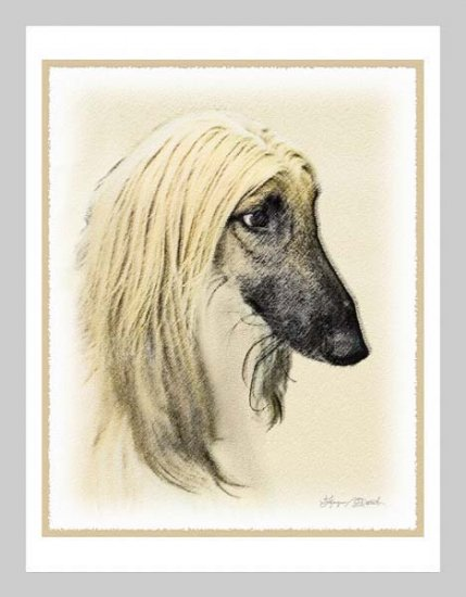 6 Afghan Hound Note or Greeting Cards