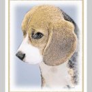 6 Beagle Puppy Note or Greeting Cards