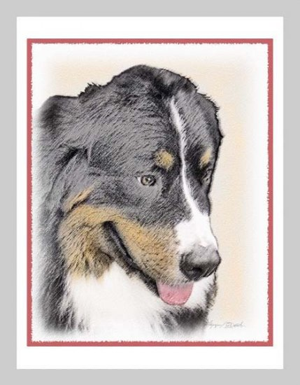 6 Bernese Mountain Dog Note or Greeting Cards