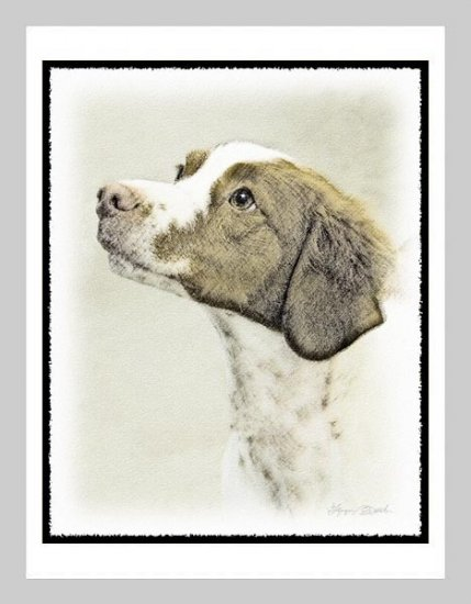 6 Brittany Spaniel Note or Greeting Cards