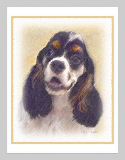 6 Cocker Spaniel Parti-Color Note or Greeting Cards