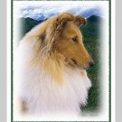 6 Collie Note or Greeting Cards