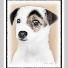 6 Jack Russell Terrier Puppy Note or Greeting Cards