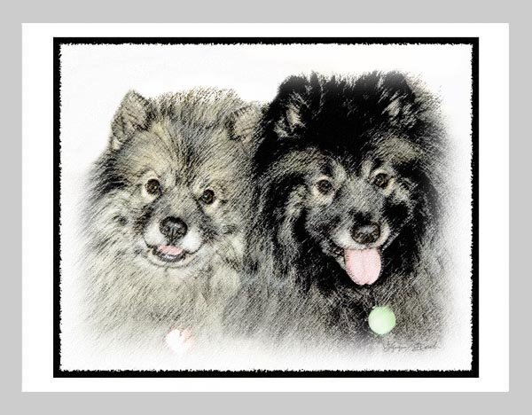 """6 Keeshond Note or Greeting Cards """"""""Mother & Son"""""""""""