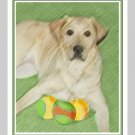 6 Labrador Retriever Note or Greeting Cards