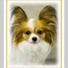 6 Papillon Note or Greeting Cards