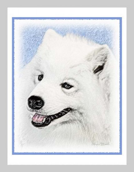 6 Samoyed Note or Greeting Cards