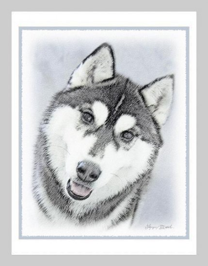 6 Siberian Husky Note or Greeting Cards