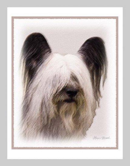 6 Skye Terrier Note or Greeting Cards