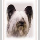 6 Skye Terrier Note or Greeting Cards