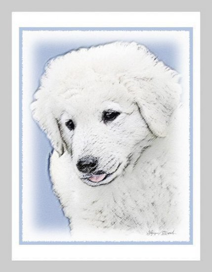 6 Kuvasz Puppy Note or Greeting Cards