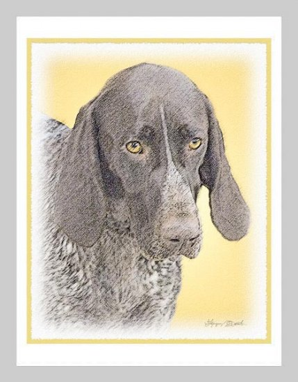 6 German Shorthaired Pointer Note or Greeting Cards