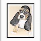 Basset Hound Puppy Dog Art Print Matted 11x14