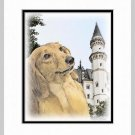 Dachshund Dog Art Print Matted 11x14