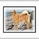Finnish Spitz Dog Art Print Seashore Matted 11x14