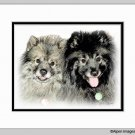 Keeshond Dog Art Print Matted 11x14