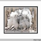Keeshond Dog Butts at the Gate Matted 11x14