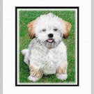 Lhasa Apso Puppy Matted Original Art Print 11x14