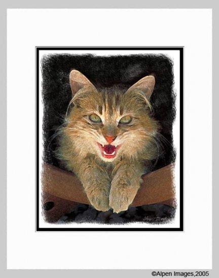 Mad Yellow Cat Art Print Matted 11x14