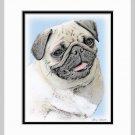 Pug Dog Art Print Matted 11x14