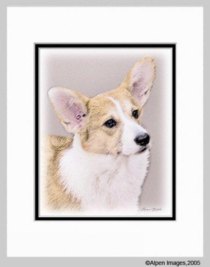 Welsh Corgi Dog Matted Art Print 11x14