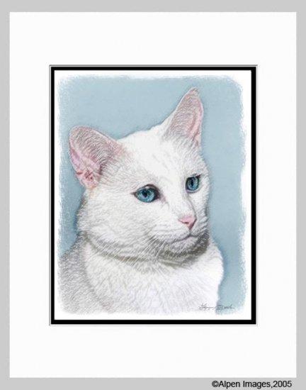 White Cat Art Print Matted 11x14