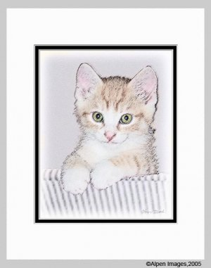 Yellow Kitten on Couch Cat Art Print Matted 11x14