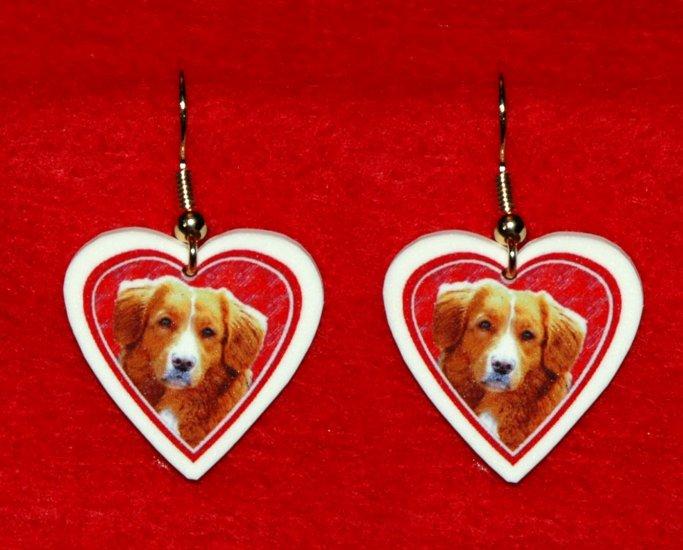 Nova Scotia Duck Tolling Retriever Dog Heart Earrings