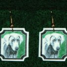 Weimaraner Jewelry Earrings Handmade
