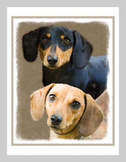 6 Dachshund Note or Greeting Cards
