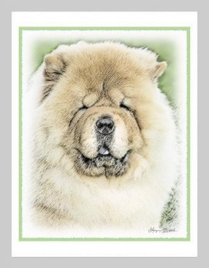 6 Chow Chow Note or Greeting Cards
