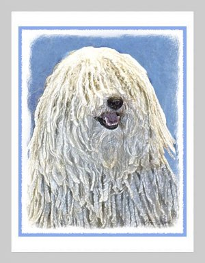 6 Puli Note or Greeting Cards