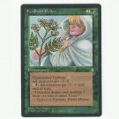 Fyndhorn Pollen Ice Age  NM  Magic The Gathering MTG