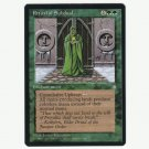 Ritual of Subdual Ice Age  NM  Magic The Gathering MTG