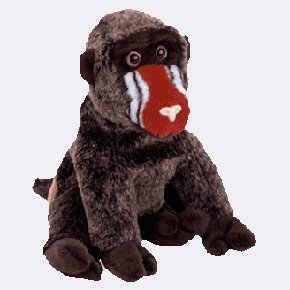 (12) CHEEKS The Baboon TY Beanie Babies 4250,  DOZEN NEW MWT