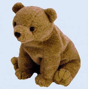 (12) PECAN The Gold Bear TY Beanie Babies DOZEN NWT