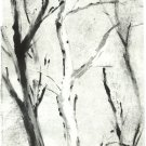 White Tree Monotype