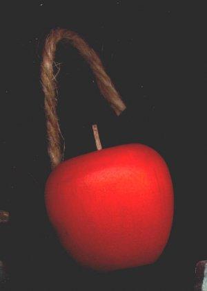 Hanging Apple - Wooden Miniature