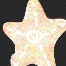 Sea Shell #3 - Naultical / Sea Shell Wooden Miniature