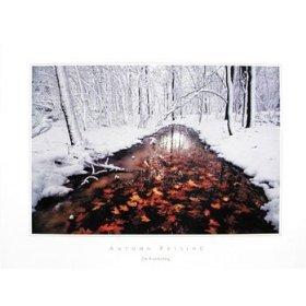 Autumn Passage Scenic Art Poster Print by Jim Brandenburg, 24x18