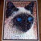 Amazing Siamese Cat Montage mosaic limited signed coa 1-25