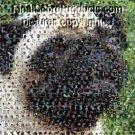 Amazing PUG Dog Montage Mosaic pop art limited signed coa 1-25